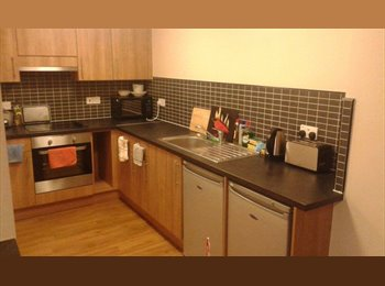 Double room with en suite, student flat £115 pw.