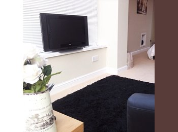 Double and single bedrooms in professional, modern, clean...
