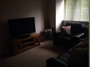 EasyRoommate UK - 1 bedroom flat for rent - Willenhall, Coventry - £450