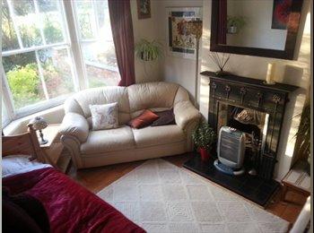 EasyRoommate UK - Ground floor frontroom with bay window - Stony Stratford, Milton Keynes - £450