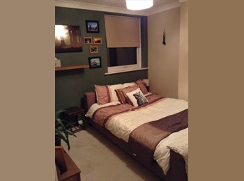 EasyRoommate UK - Double room in Colchester - Colchester, Colchester - £400