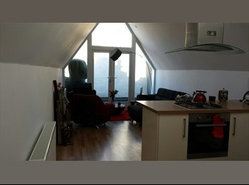 Lovely double bedroom in amazing Portsmouth flat