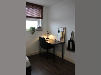 EasyRoommate UK - Vacant room in a great house - Crookes, Sheffield - £303