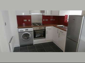 Newly refurbished studio flat to rent MUST VIEW