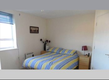 Lovely furnished flat to share in short term basis