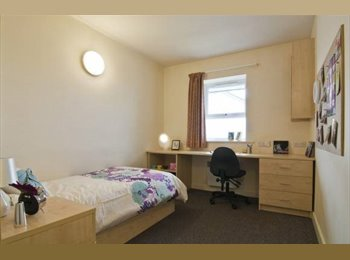 STUDENT WANTED FOR DOUBLE ROOM - IQ SALFORD