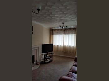 'Double room to let preferably female