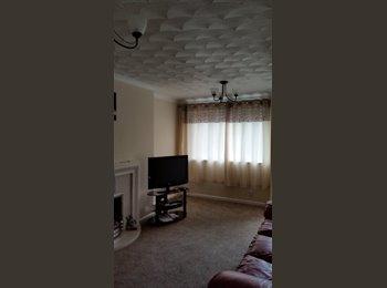 EasyRoommate UK -  'Double room to let preferably female - Basingstoke, Basingstoke and Deane - £400