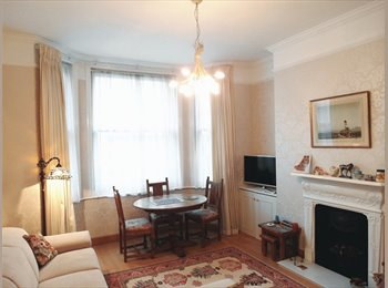 Baker street nice flat, one room to let
