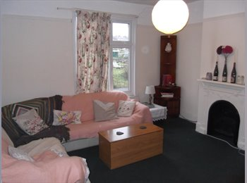 Spacious Double Room in 2 Bed Flat Walthamstow