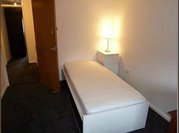 EasyRoommate UK - 3 brand new rooms for lodge - Basingstoke, Basingstoke and Deane - £500
