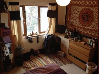 Room in 3 bed house with garden
