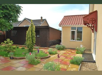 EasyRoommate UK - LUXUARY HOUSE ROOM SHARE - Taverham, Norwich and South Norfolk - £325