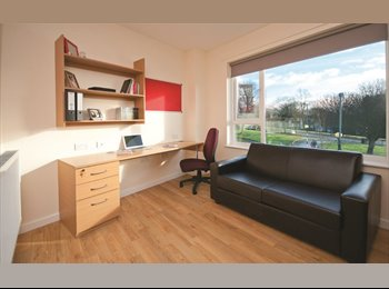 EasyRoommate UK - ALL BILLS STUDIO CLOSE TO UNI BIRMINGHAM - Harborne, Birmingham - £716