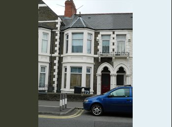 EasyRoommate UK - 1 Double Room with all the neccessary commodities - Roath, Cardiff - £330