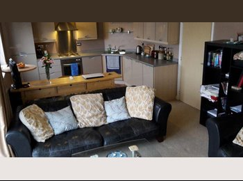 EasyRoommate UK - Homely Friendly Apartment in bay - Cardiff Bay, Cardiff - £337