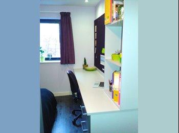 EasyRoommate UK - Modern and stylish en-suite room in Mansion Beaver - Edinburgh Centre, Edinburgh - £540