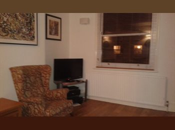 EasyRoommate UK - Double bedroom to rent in nice flat near tube - Finsbury Park, London - £864