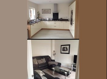 EasyRoommate UK - Brand New House - easy link to M5 and Glos city - Hardwicke, Gloucester - £400