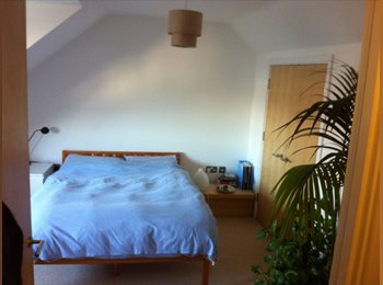 EasyRoommate UK - Bright, spacious attic room in family home - Alexandra Palace, London - £710