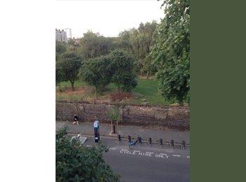 EasyRoommate UK - The flat overlooks the beautiful Haggerston Park - Hackney, London - £750