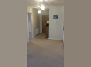 EasyRoommate UK - awesome house mate needed - Perth, Perth - £430