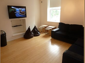 EasyRoommate UK - PROFESSIONAL SHARE. BILLS & COUNCIL TAX INCLUDED. - Newcastle upon Tyne, Newcastle upon Tyne - £400