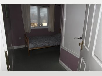 EasyRoommate UK - Recently decorated room in modern house - Ward End, Birmingham - £240