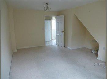 EasyRoommate UK - SINGLE ROOM, INC BILLS, NEW FURNITURE - Hampton, Peterborough - £349
