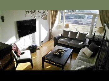 EasyRoommate UK - Fantastic double bedroom in Roehampton - Putney, London - £500