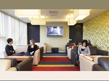 EasyRoommate UK - En-Suite Student Flat, Birmingham, B4 7XE - Birmingham City, Birmingham - £520