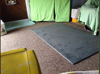 EasyRoommate US -  Duplex to share-Clean -Non Smokers only - Hendersonville, Hendersonville - $450