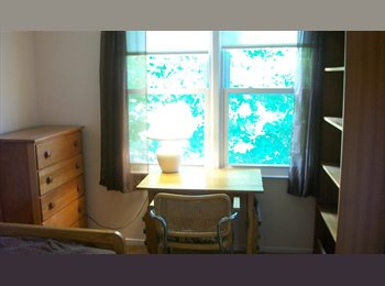 Room Available Now --- City of Falls Church