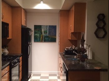 1Bed 1 Bath for rent