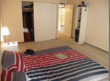 EasyRoommate US - Nice apt - New Haven, New Haven - $400