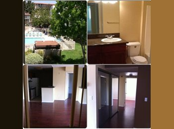 1 bedroom with shared bath in a condo near the stadium