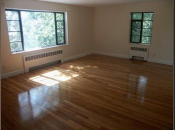 Beautiful apartment in great Newton location