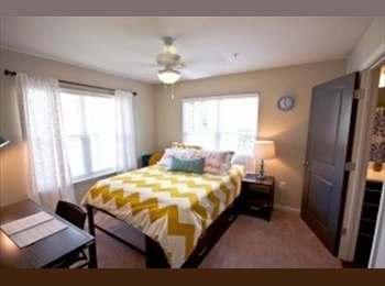 roommate wanted, subleasing bedroom in 3 bedroom flat -...