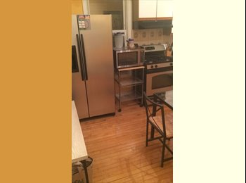 EasyRoommate US - profile title? looking for a roomate?? haha - Lakeview, Chicago - $850