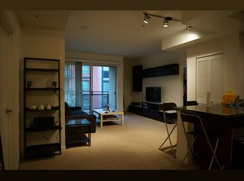 Looking for Apartment mate in Amazing NoHo Apartme