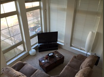 EasyRoommate US - Pent House Bedroom in Downtown New Brunswick!! - New Brunswick, Central Jersey - $1016