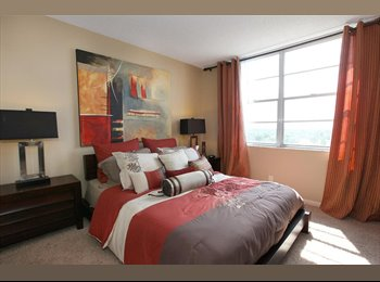 EasyRoommate US - PENTHOUSE ROOMMATE WANTED! - Wilton Manors, Ft Lauderdale Area - $800