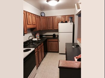 EasyRoommate US - Renter - Browncroft, Rochester - $590