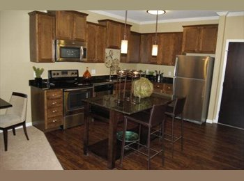 Roommate needed for upscale St Paul Apt