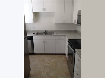 +++++Looking for a roommate!+++++