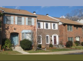 EasyRoommate US - Room with TV ensuite room for rent - Bethesda, Other-Maryland - $750