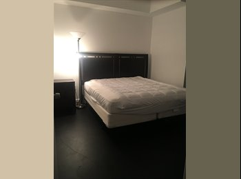Downtown Miami Room Available