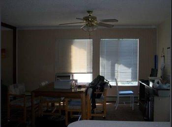 EasyRoommate US - Renting 1 room $385 utilities included by unr! - Reno, Reno - $350