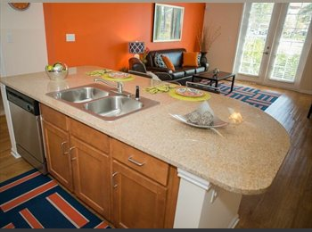 EasyRoommate US - SUBLEASING $470 APARTMENT IN CANOPY APARTMENTS! - Gainesville, Gainesville - $470