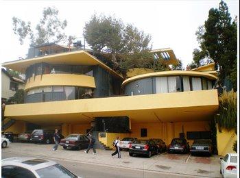 EasyRoommate US - Cozy Room in Westwood Apartment - Westwood, Los Angeles - $850